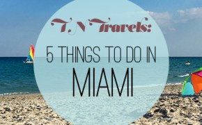 things-to-do-in-miami