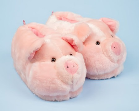 pigslippers