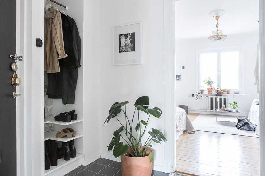 scandinavian_home_interior_plants_4