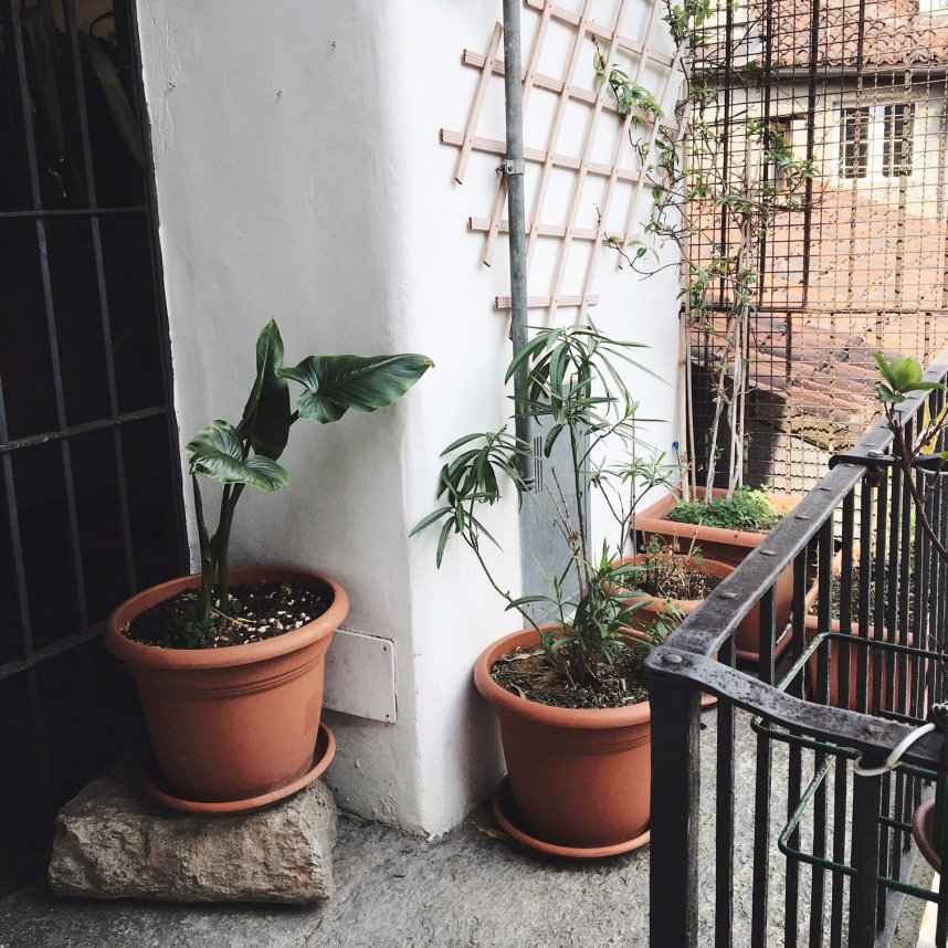 airbnb_torino_italy_outside2