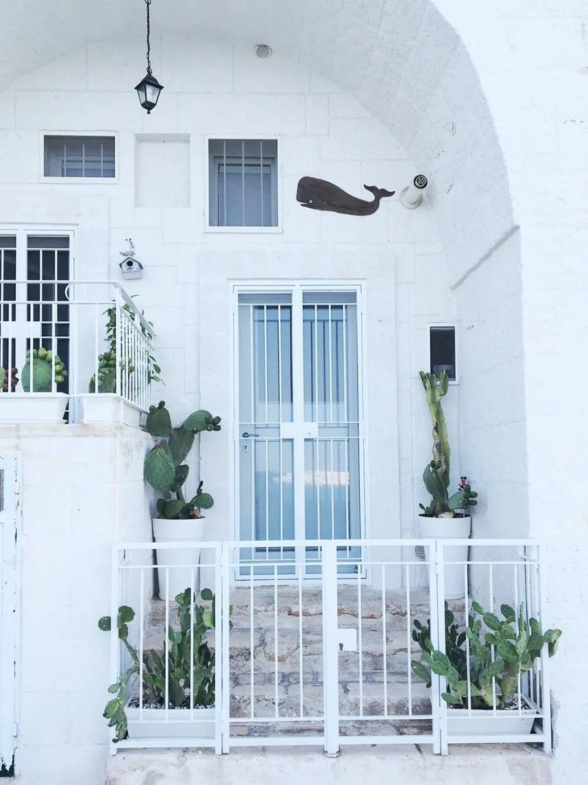 puglia_monopoli_home_plants