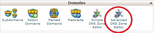 Advanced DNS Zone editor in cPanel