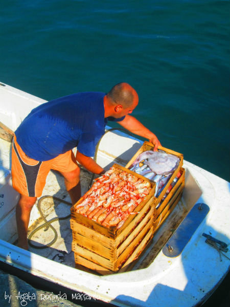 ryby santa margherita ligure