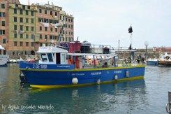 camogli,liguria,italy,sea,fish