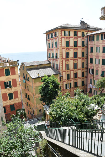 camogli,liguria,italy,sea