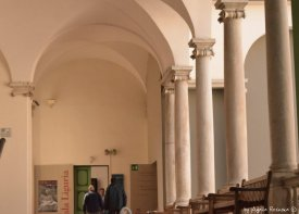 exibitions in Palazzo Ducale