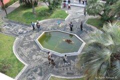 fontanna w Palazzo Reale