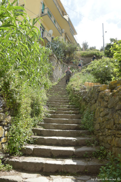 stairs from Monterosso