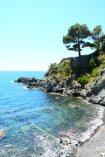 beaches Levanto