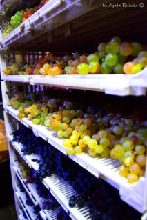 lots of grapes