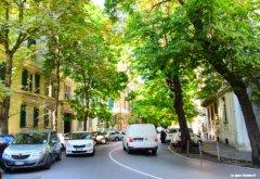 main street Castelletto