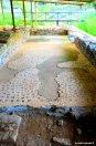 roman mosaics Villa Varignano