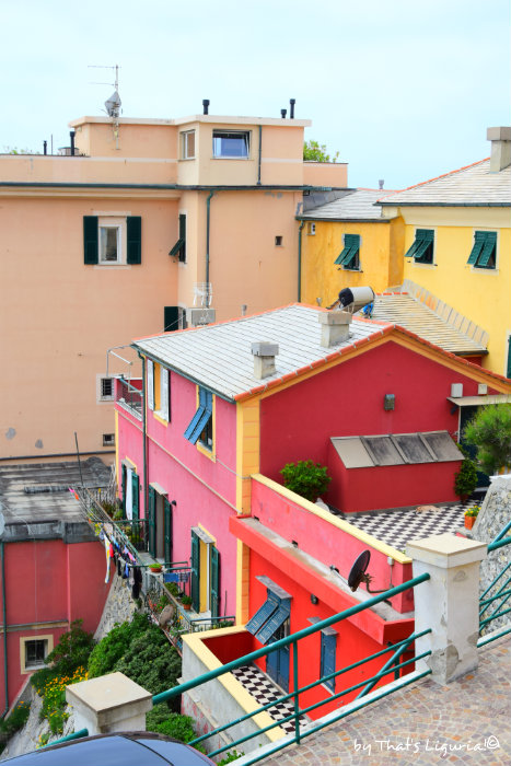 colorful houses Boccadasse