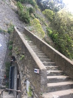 the last stairs to Punta Chiappa