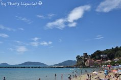 beach and castle San Terenzo