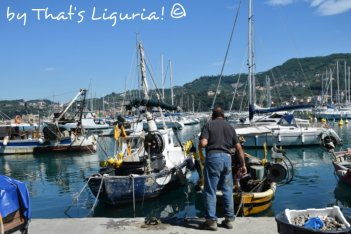 harbour Lerici