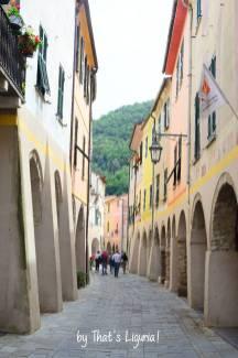 main via in Zuccarello