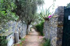 path to the public beach Recco