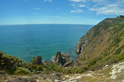 Sheer cliffs leading to Nugget Point