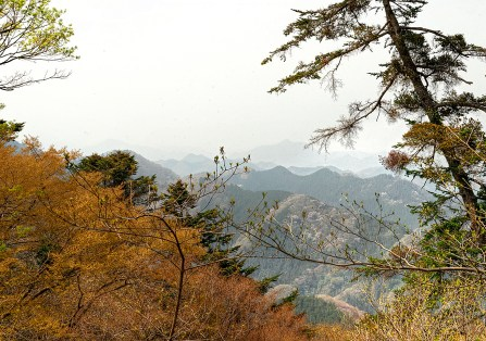 View from the top of Mount Takao