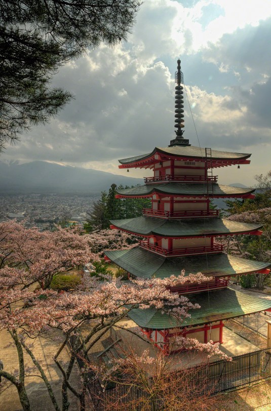 5 level Pagoda with Cherry blossoms