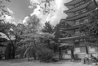 clouds with pagoda and hanami blossoms