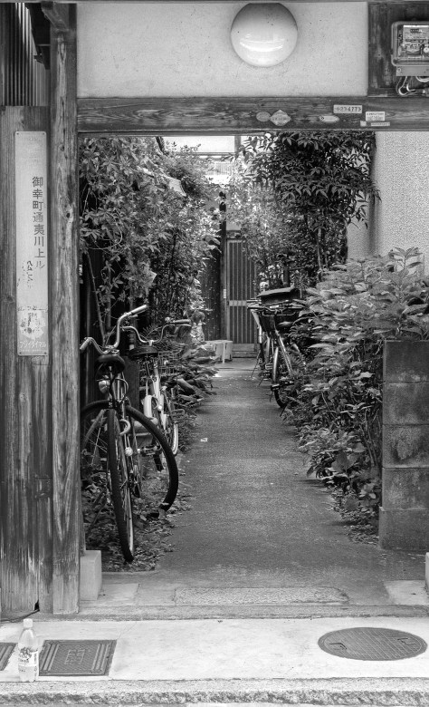 Bikes in the lane