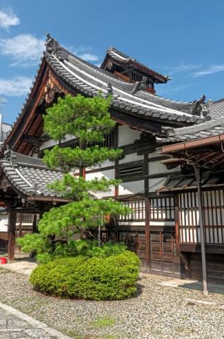 Nice Japanese house