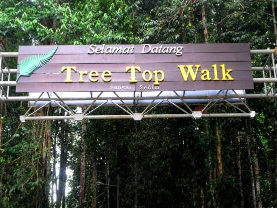Sedim Tree Top Walk