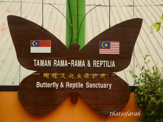 Butterfly & Reptile Sanctuary 3