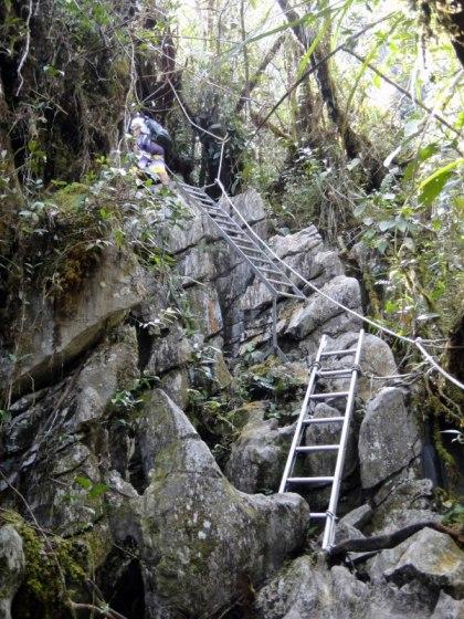 Mulu Pinnacles Trail