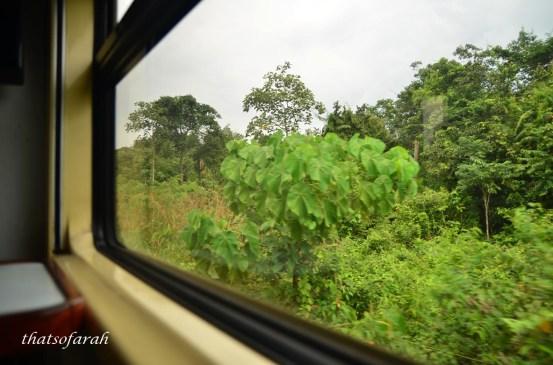 Jungle Train Malaysia