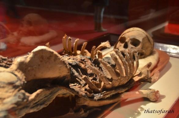 Mummy of King Tapnit