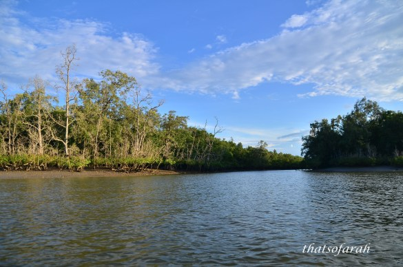 Kuching Wetland