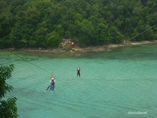 Coral Zipline Flyer