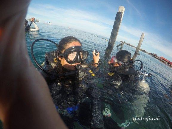 Diving - Paradise
