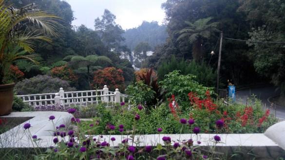 The View from Hamzah's Restaurant