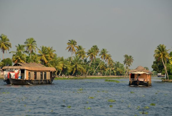 Backwater of Alleppey