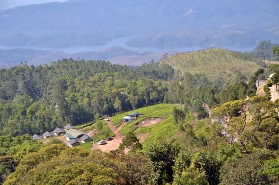 Suryanelli Camp Munnar