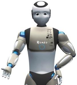 Assistant Humanoid Robot