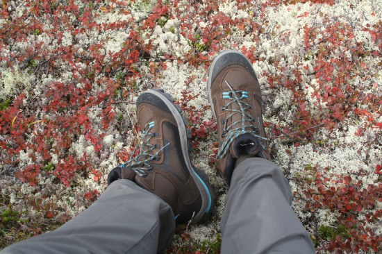 hike_shoes_that_wanderlust