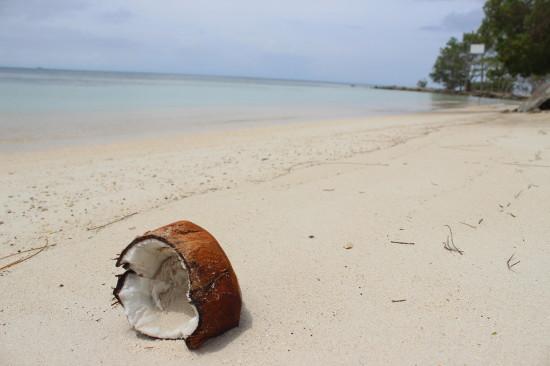 Utila_beach