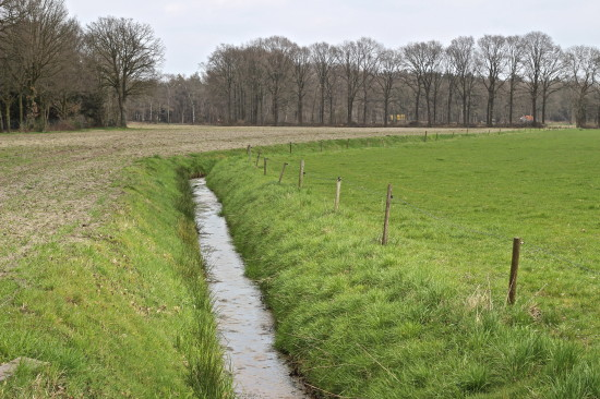 Your typical countryside over here in the Netherlands