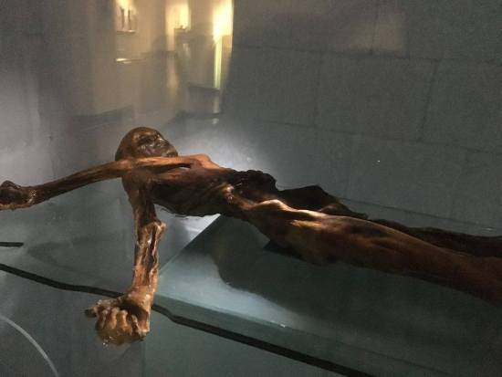 The mummy of Ötzi