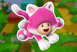 Rumour: Hidden File Suggests Toadette Was Planned As A Playable Character In Super Mario 3D World 3