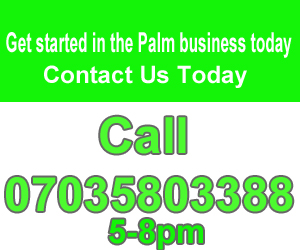call-brian-today