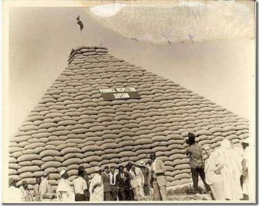groundnut-pyramid_thumb.jpg