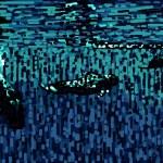 "Pamela Williamson ""Pilot Whales"""