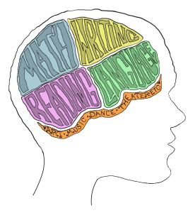 brain1 sketch_normal_illustrate_with_neck