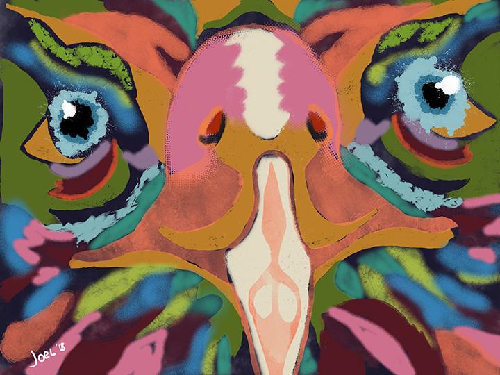 Joel Anderson Colorful Eagle